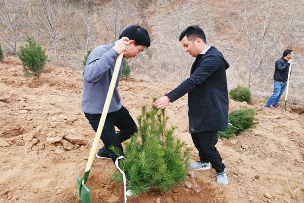 公司组织机关干部职工积极参加植树活动